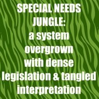 What's missing in the Special Needs Jungle
