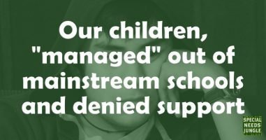 "Our children, ""managed"" out of mainstream schools and denied support"