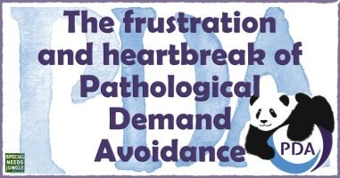 The frustration and heartbreak of Pathological Demand Avoidance