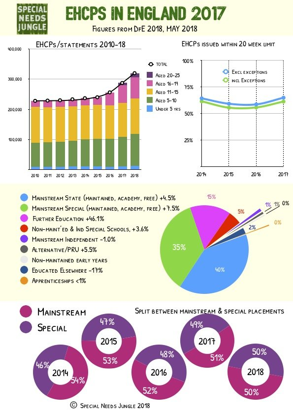 infographic illustrating stats in the article